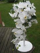 bouquet di orchidee